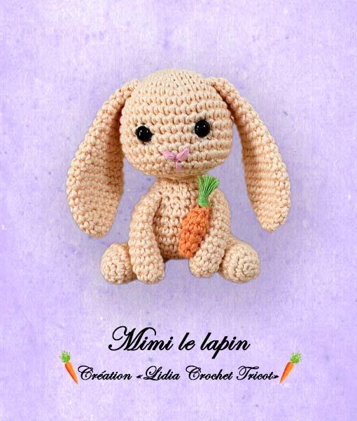 Mimi le lapin ( tutoriel Lidia Crochet Tricot)