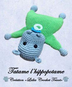 Tatame l'hippopotame ( tutoriel Lidia Crochet Tricot)