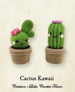 Cactus Kawaii (tutoriel Lidia Crochet Tricot)